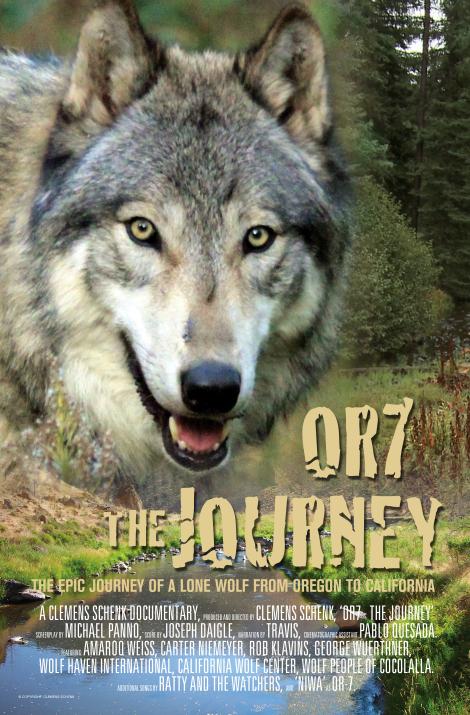 Wolf Journey